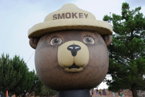 The original, ursine Smokey Bear shares an Aug. 9 birthday with actor Sam Elliott — also 75 years - old — who has provided the voice of the iconic bear in wildfire education commercials.  (Press Staff Photo by Geoffrey Plant)
