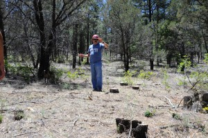 (Press Staff Photo by Geoffrey Plant)  In May, Gabe Partido, forest fuels and timber manager for the Gila National Forest, led a tour of the Gatton's Park fuels treatment project on U.S. Forest Service land, in the upper Mimbres Valley. Fire prevention projects like this one were suspended due to a decision in an ongoing lawsuit over Mexican spotted owl habitats.