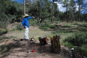 (Press Staff Photo by Geoffrey Plant)  Bear Mountain Road resident Gary Harkins stands atop a hill covered in makeshift target debris and clay pigeon pieces just off Forest Road 858 on the edge of the Gila National Forest, pointing to once live trees eventually felled by bullets.