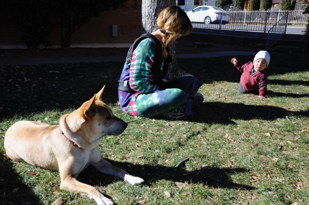 Ten month-old Elric Lopez enjoys the morning sun on the lawn in front of the Silver City Public Library last Saturday with mom Marissa Jackson and their dog Judah.