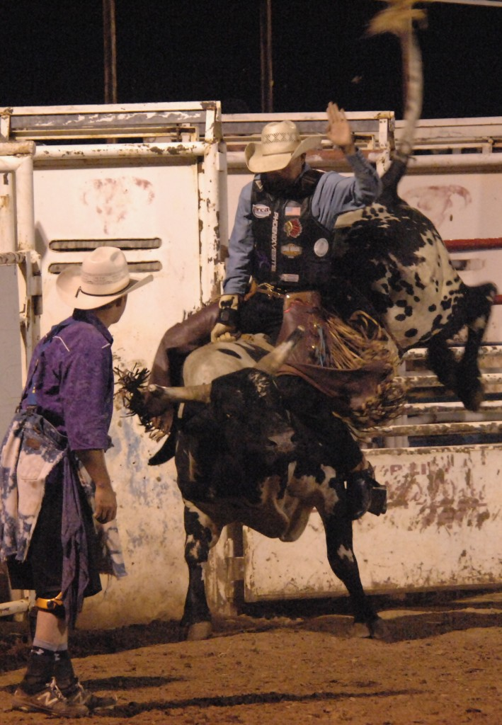 (Daily Press File Photo by Dean Thompson) For only the second time since its beginning in 1989, the Wild Wild West Pro Rodeo will not be held this year. The annual rodeo was scheduled for the third week of June at the Southwest Horseman's Arena. Rodeo Chairman John Myers made the announcement on the SWHA webpage Tuesday afternoon. The only other time the rodeo was not held was in the mid-1990s when an equine disease was present in New Mexico. Above is a cowboy taking his ride during a past rodeo.