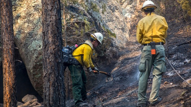 (Courtesy Photo) Firefighters work to build a fire line earlier this month on the Tadpole Fire, located north of Pinos Altos.